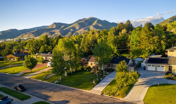 Foothill Oasis